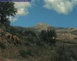 Mt. Cuyamaca